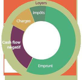 cash-flow-negatif